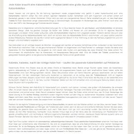 SEO Text / Web Content – Petobel – Katzenklo