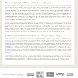 SEO Text / Web Content – Petobel – Katzen Zubehör